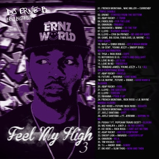 djernieb-feelmyhigh3-